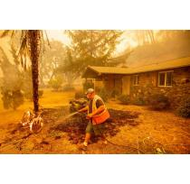 Napa and Sonoma Contend with Wildfires as Harvest Begins